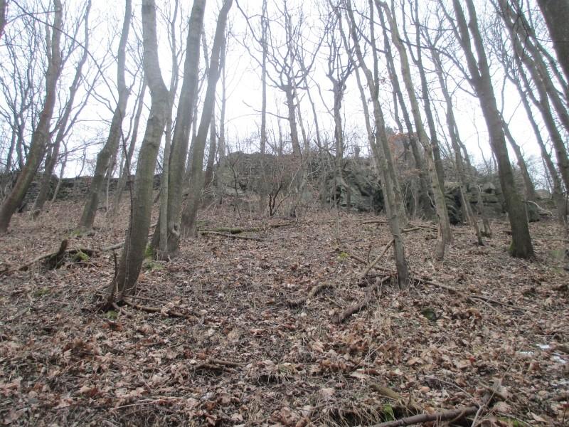 15-02-14_waidmann_hike_06