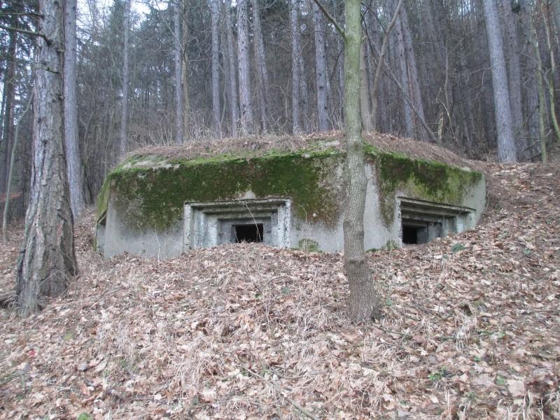 15-02-14_waidmann_hike_16