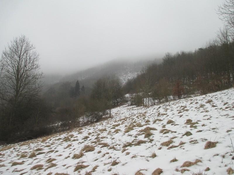 15-02-14_waidmann_hike_21