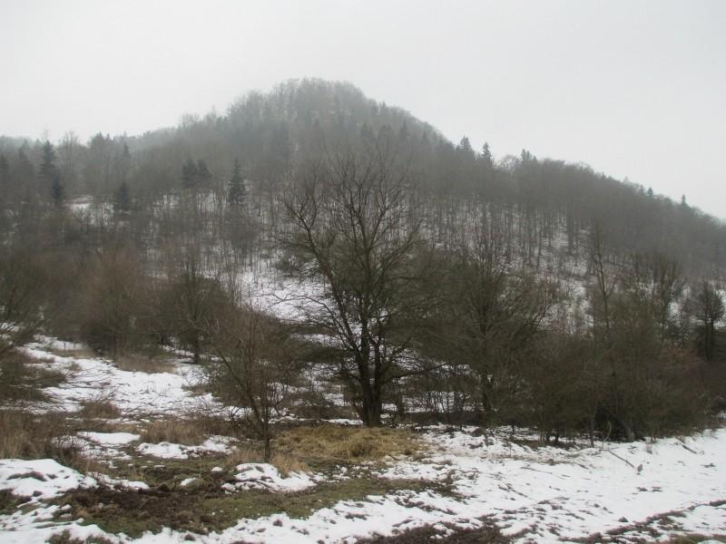 15-02-14_waidmann_hike_24