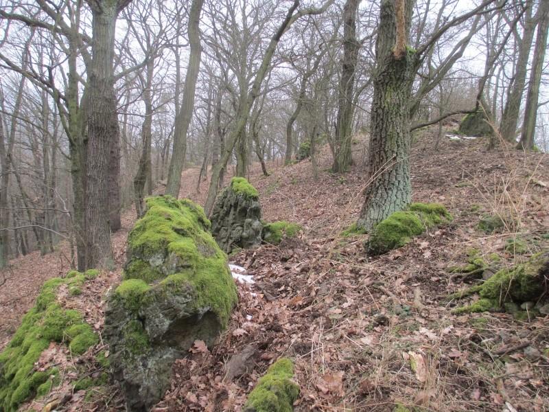 15-02-14_waidmann_hike_25