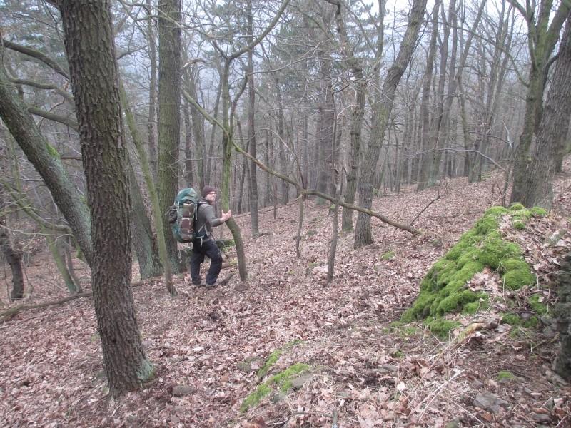 15-02-14_waidmann_hike_26
