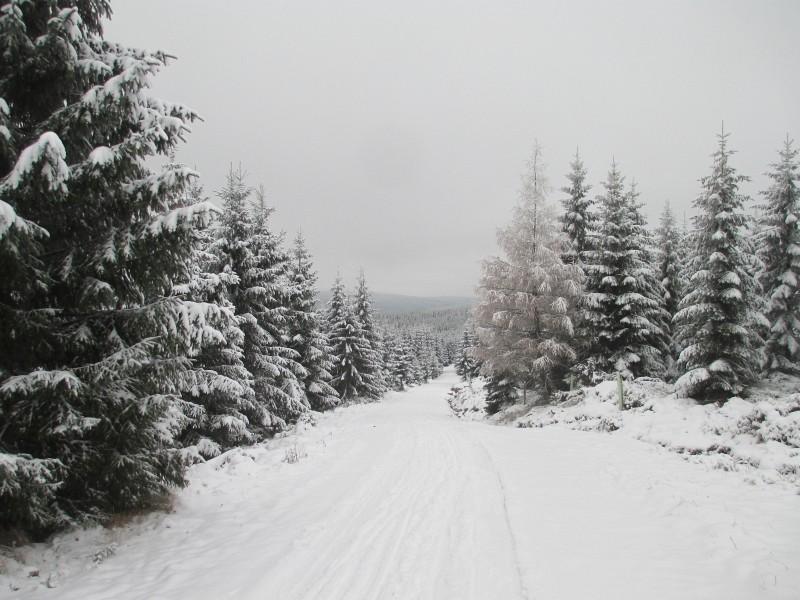 2015-winter-hike_05
