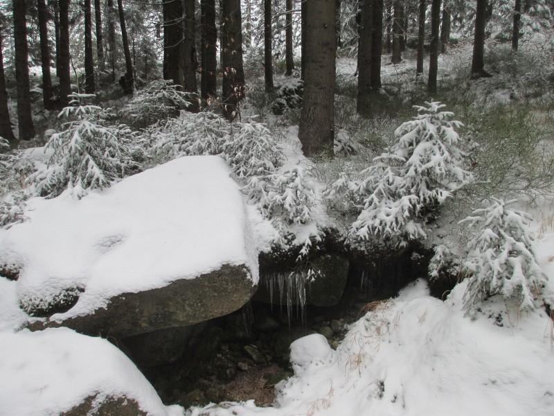 2015-winter-hike_11