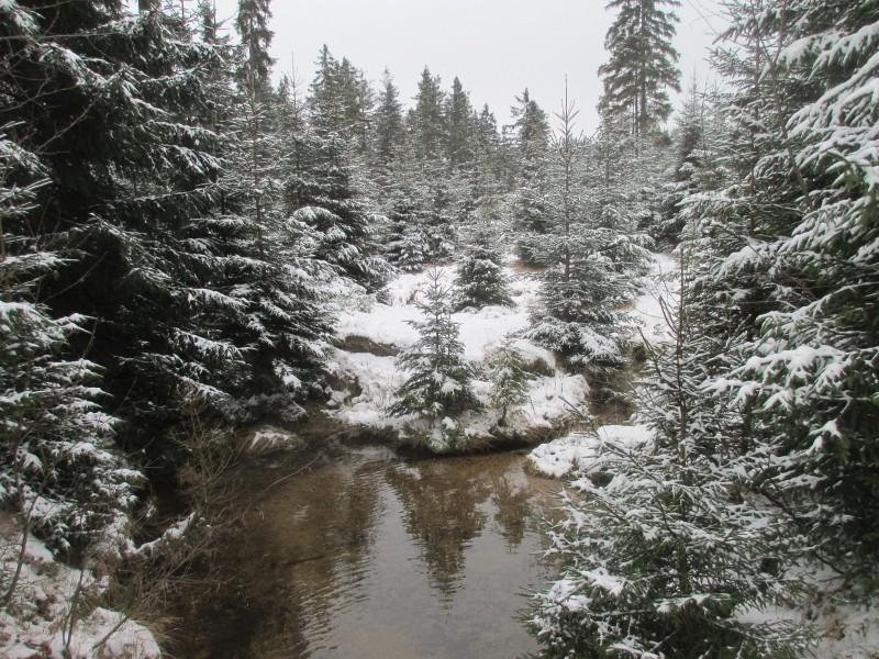 2015-winter-hike_12