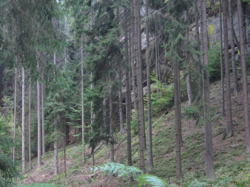 ENSC-hike-28