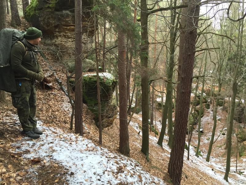 fatwood_hike_05