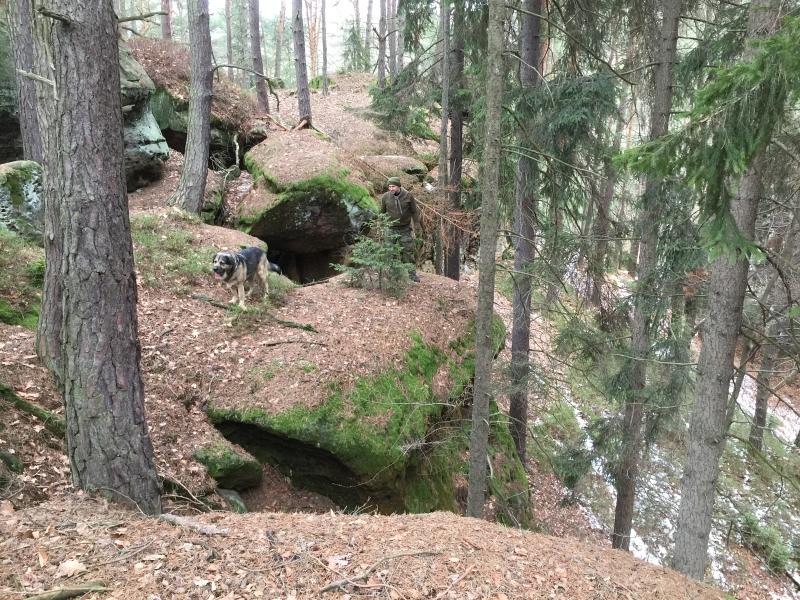 fatwood_hike_11